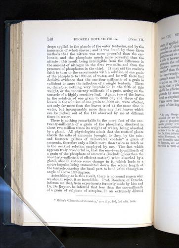 Image of Darwin-F1225-1888-140