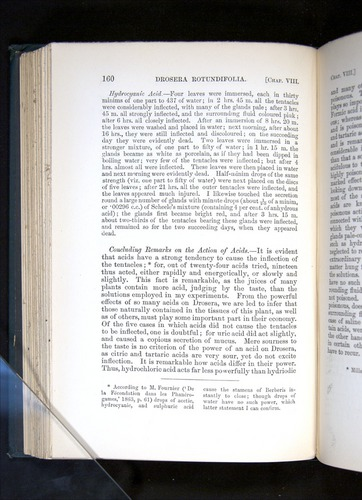 Image of Darwin-F1225-1888-160
