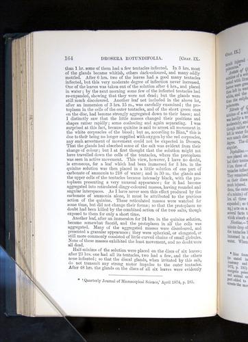 Image of Darwin-F1225-1888-164