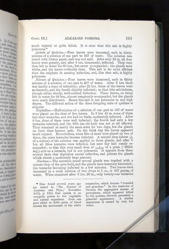 Image of Darwin-F1225-1888-165