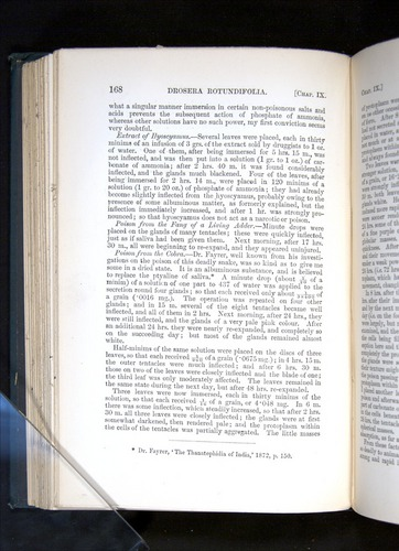 Image of Darwin-F1225-1888-168