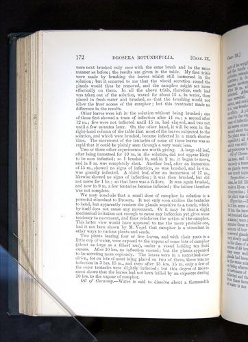 Image of Darwin-F1225-1888-172