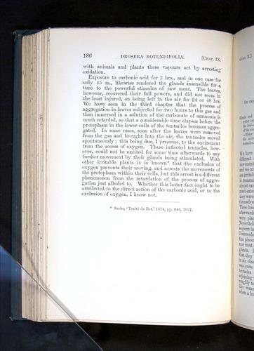 Image of Darwin-F1225-1888-186