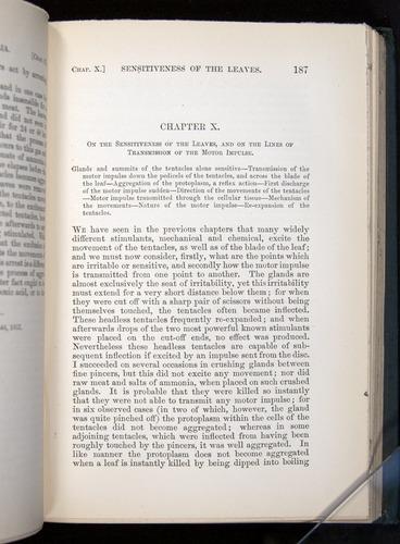 Image of Darwin-F1225-1888-187