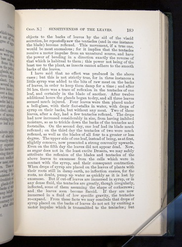 Image of Darwin-F1225-1888-189