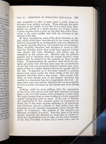 Image of Darwin-F1225-1888-199