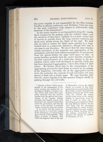 Image of Darwin-F1225-1888-204