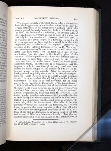 Image of Darwin-F1225-1888-205