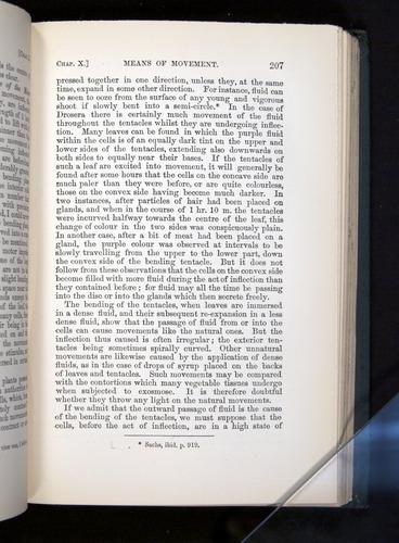 Image of Darwin-F1225-1888-207