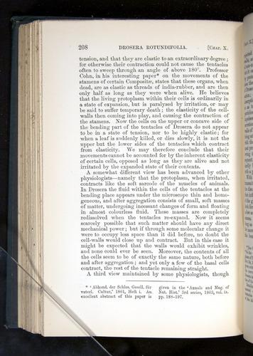 Image of Darwin-F1225-1888-208