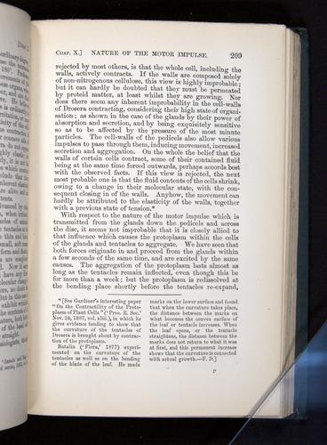 Image of Darwin-F1225-1888-209