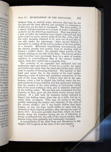 Image of Darwin-F1225-1888-211