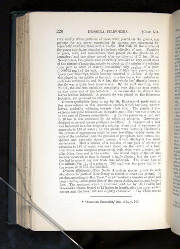 Image of Darwin-F1225-1888-226