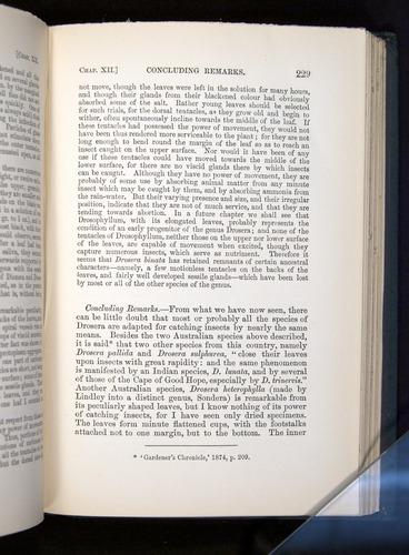 Image of Darwin-F1225-1888-229