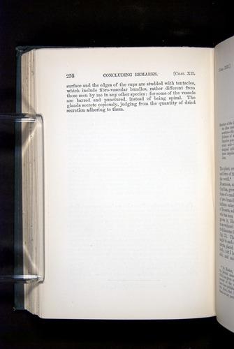 Image of Darwin-F1225-1888-230