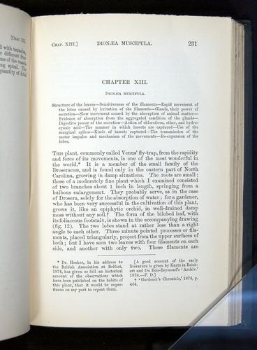 Image of Darwin-F1225-1888-231
