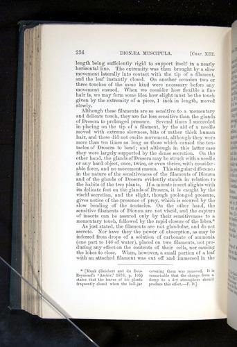 Image of Darwin-F1225-1888-234