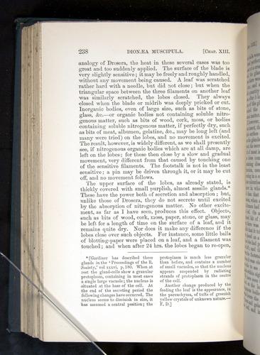 Image of Darwin-F1225-1888-238
