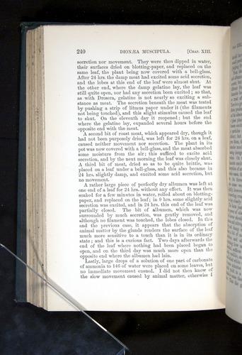 Image of Darwin-F1225-1888-240