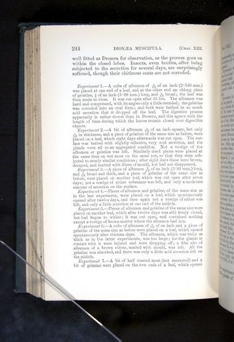 Image of Darwin-F1225-1888-244