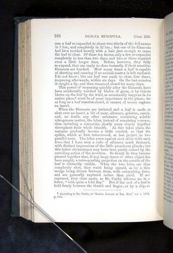 Image of Darwin-F1225-1888-248