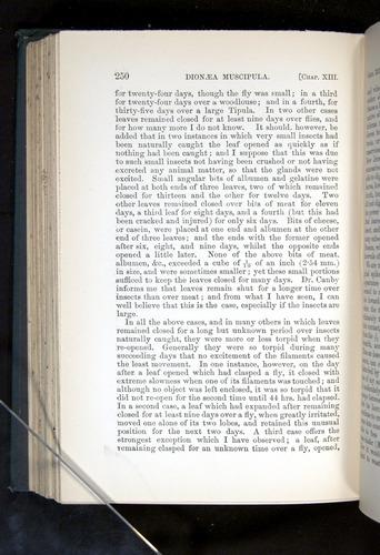 Image of Darwin-F1225-1888-250