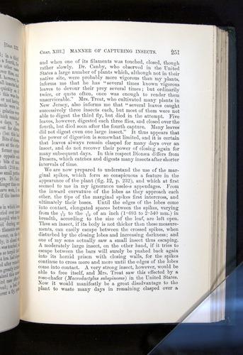 Image of Darwin-F1225-1888-251