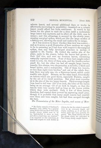 Image of Darwin-F1225-1888-252