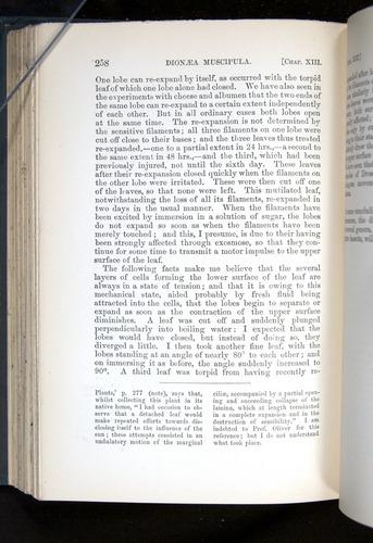 Image of Darwin-F1225-1888-258