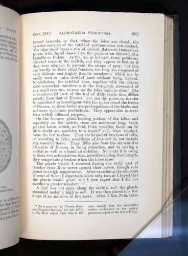 Image of Darwin-F1225-1888-263