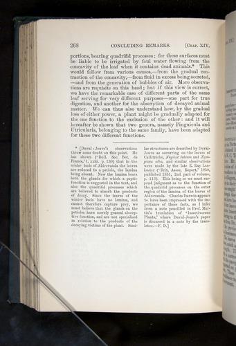 Image of Darwin-F1225-1888-268