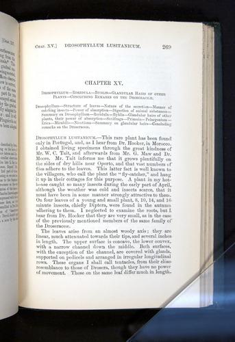 Image of Darwin-F1225-1888-269