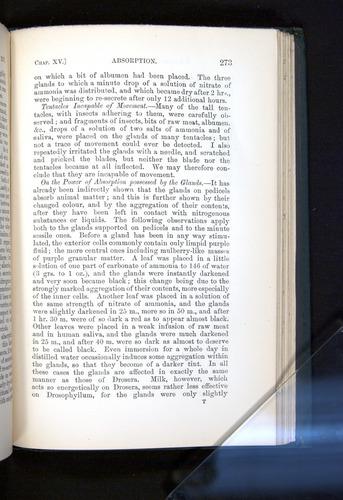 Image of Darwin-F1225-1888-273