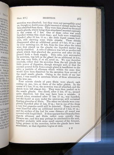 Image of Darwin-F1225-1888-275