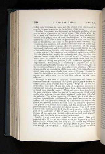 Image of Darwin-F1225-1888-280