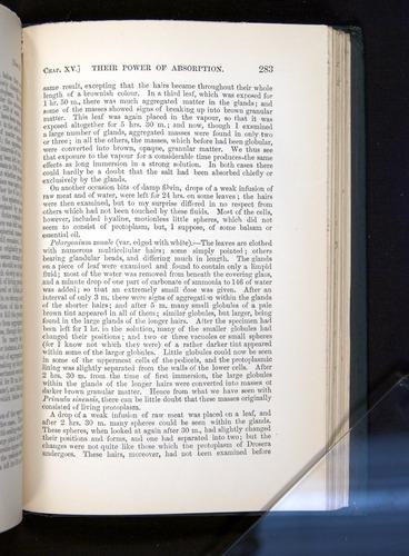 Image of Darwin-F1225-1888-283
