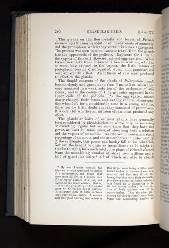 Image of Darwin-F1225-1888-286
