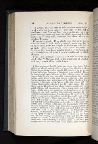 Image of Darwin-F1225-1888-298