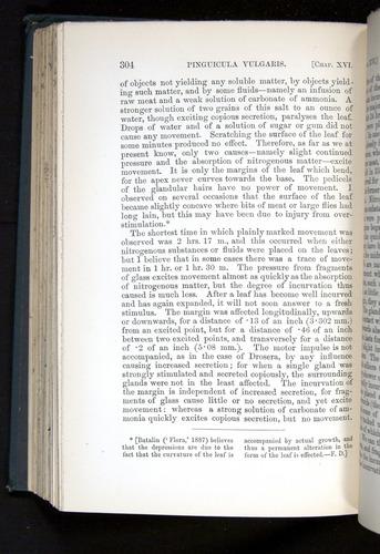 Image of Darwin-F1225-1888-304