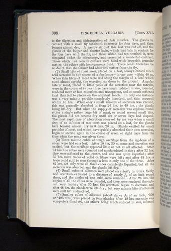Image of Darwin-F1225-1888-308