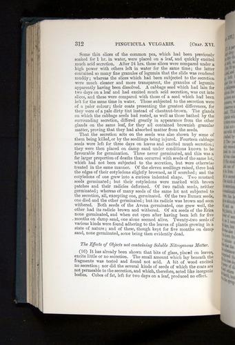 Image of Darwin-F1225-1888-312