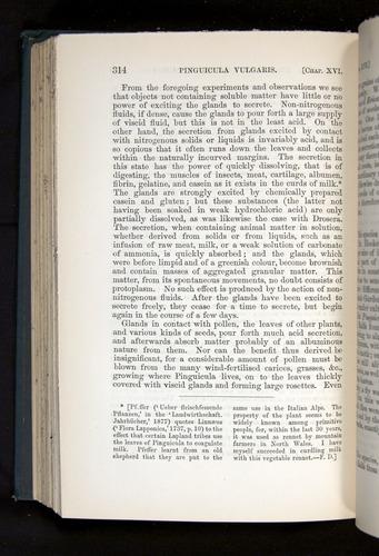 Image of Darwin-F1225-1888-314
