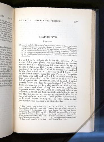 Image of Darwin-F1225-1888-319