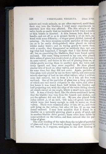 Image of Darwin-F1225-1888-328