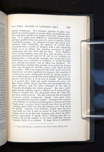 Image of Darwin-F1225-1888-329