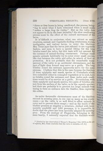 Image of Darwin-F1225-1888-330