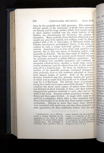 Image of Darwin-F1225-1888-332