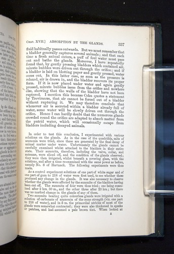 Image of Darwin-F1225-1888-337