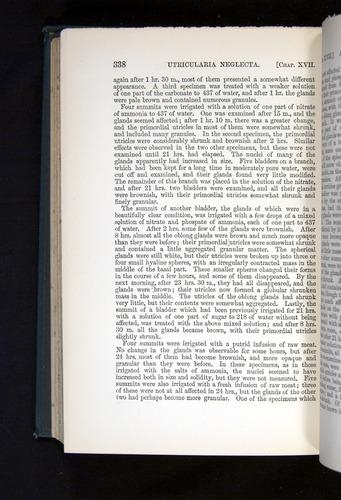 Image of Darwin-F1225-1888-338