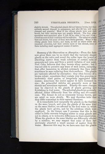 Image of Darwin-F1225-1888-340